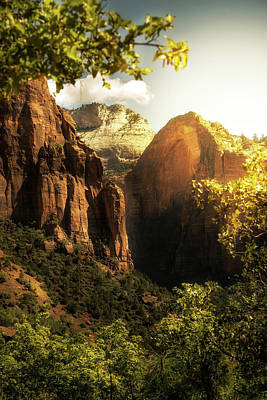 Photograph - Golden Sunrise In Zion Canyon National Park by Susan Schmitz