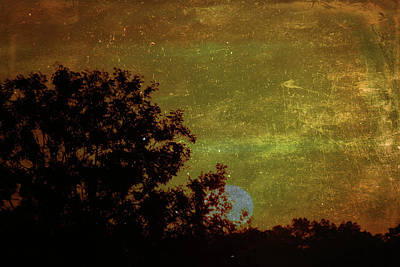 Mixed Media - Golden Sunrise by Lisa Stanley