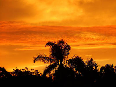 Photograph - Golden Sunrise by Mark Blauhoefer