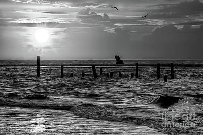 Photograph - Golden Sunrise On The Outer Banks  Bw by Dan Carmichael