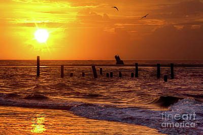 Photograph - Golden Sunrise On The Outer Banks by Dan Carmichael