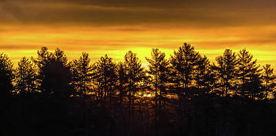 Photograph - Golden Sunrise by Robert McKay Jones