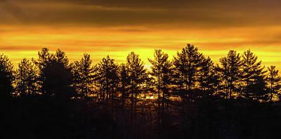 Photograph - Golden Sunrise by Robert McKay Jones
