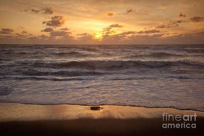 Photograph - Golden Sunrise  by Susan Cole Kelly
