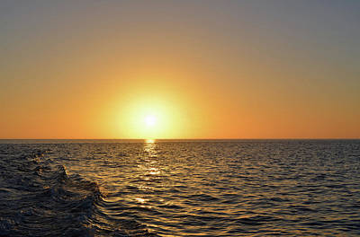 Photograph - Golden Sunset by Aimee L Maher Photography and Art Visit ALMGallerydotcom