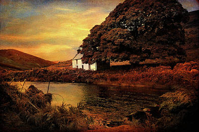 Photograph - Golden Sunset At Lake.  Rural Ireland by Jenny Rainbow