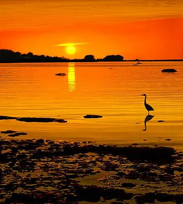 Golden Sunset At The Bay Art Print