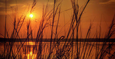 Golden Sunset At The Lake Art Print by John Williams