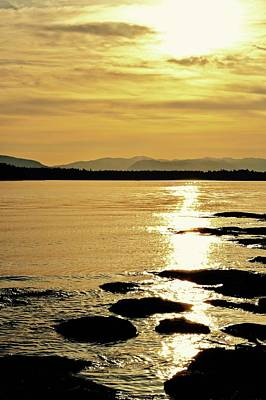 Photograph - Golden Sunset Beachcomber by Brian Sereda