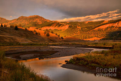 Photograph - Golden Sunset In Lamar Valley by Adam Jewell