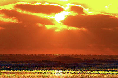 Golden Sunset Art Print by Kami McKeon