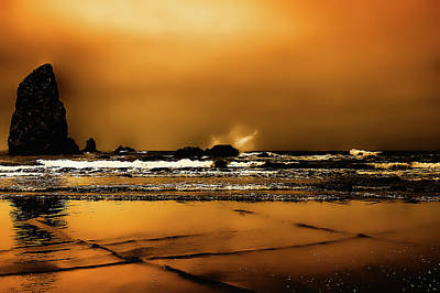 Photograph - Golden Sunset On The Beach by David Patterson