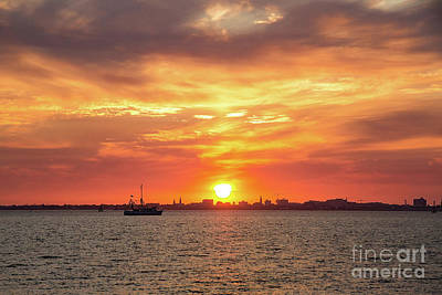 Photograph - Golden Sunset Over Charleston by Sharon McConnell