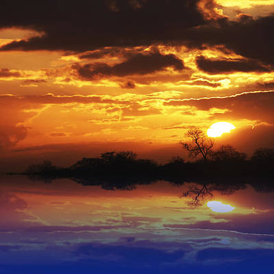 Photograph - Golden Sunset Reflecions by Gill Billington