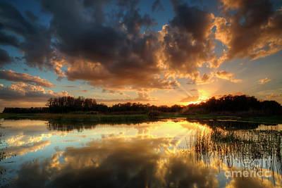 Photograph - Golden Sunset by Rick Mann
