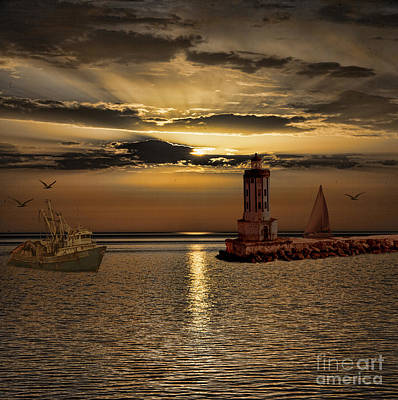 Photograph - Golden Sunset by Shirley Mangini