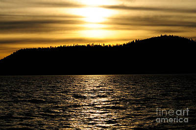 Photograph - Golden Sunset Silhouette Tahoe by Haleh Mahbod