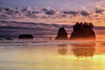 Photograph - Golden Sunset by Spencer McDonald