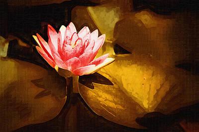 Golden Swamp Flower Art Print by Paul Bartoszek