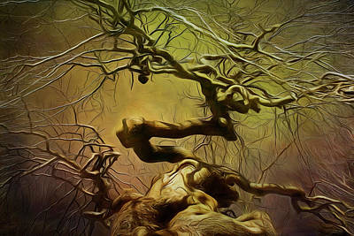 Photograph - Golden Tree by Cindi Ressler