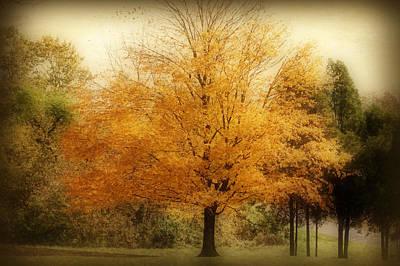 Golden Tree Art Print by Sandy Keeton
