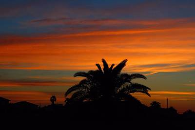 Photograph - Golden Tropical Sunset by Kathryn Meyer