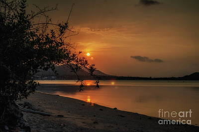 Photograph - Golden Twilight by Michelle Meenawong