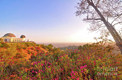 Golden View Of Griffith Observatory Art Print