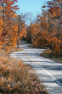 Photograph - Golden Winding Road by Mark David Zahn Photography
