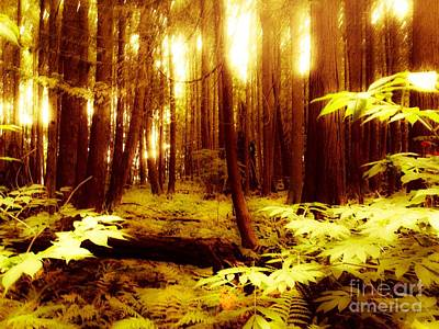 Golden Woods Art Print