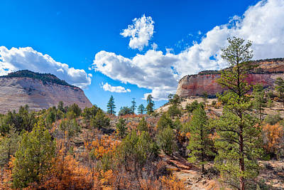 Photograph - Golden Zion by John M Bailey