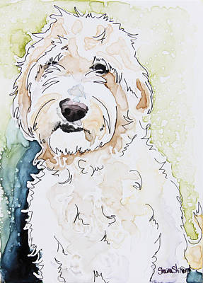 Pen And Paper Painting - Goldendoodle by Shaina Stinard