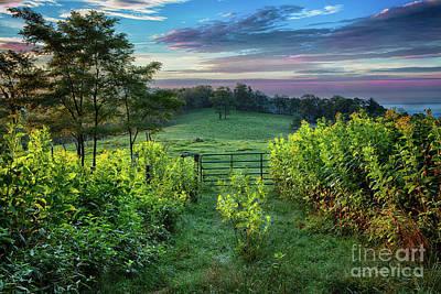 Photograph - Goldenrod Sunrise In The Blue Ridge by Dan Carmichael