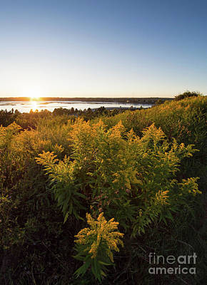 Photograph - Goldenrod Sunset, Portland, Maine #40019 by John Bald
