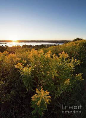 Photograph - Goldenrod Sunset, Portland, Maine #40019 by John Bald
