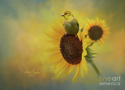 Digital Art - Goldfinch And Sunflower by Lena Auxier