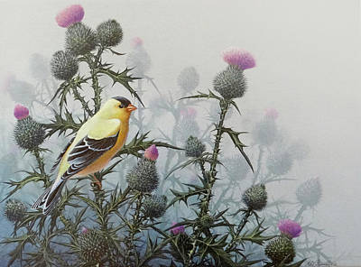 Painting - Goldfinch And Thistles by Mike Stinnett