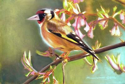 Pastel - Goldfinch by Melissa Herrin