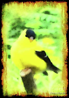 Photograph - Goldfinch With Grunge And Watercolor Effect by Debbie Portwood