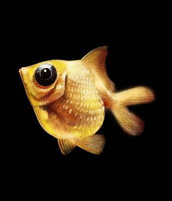 Goldfish Digital Art - Goldfish by Abdul Jamil
