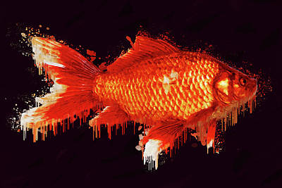 Goldfish Digital Art - Goldfish by Asif Zaman
