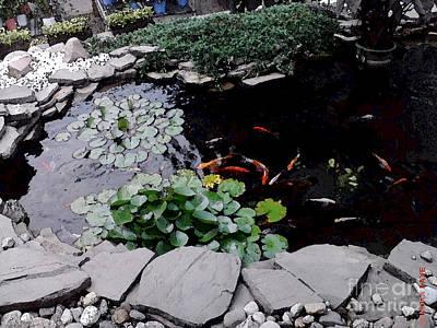 Pond Digital Art - Goldfish Pond by Sondra Faye