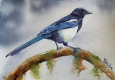 Magpies Painting - Goldigger by Patricia Pushaw