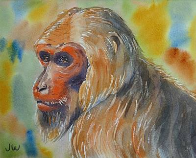 Painting - Goldilocks A Stumptail Macaque by June Walker
