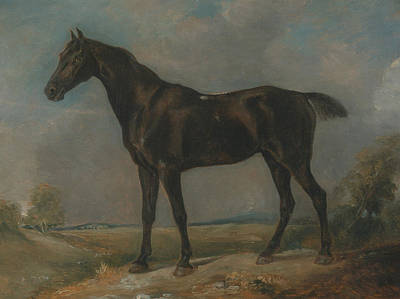 English Horse Painting - Golding Constable's Black Riding Horse by John Constable