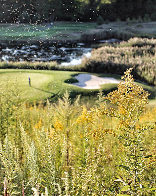 Photograph - Golf - Green Peace by Jason Nicholas