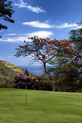 Photograph - Golf In Hawaii by Debby Richards