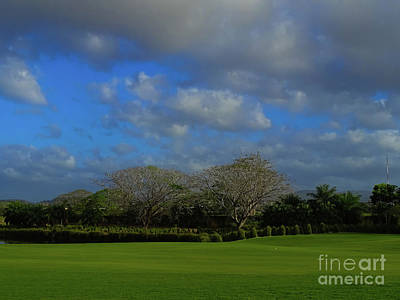 Photograph - Golfing Landscapes by Camille Pascoe