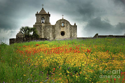 Floral Landscape Photograph - Goliad In Spring by Jon Holiday