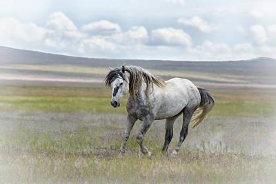 Photograph - Goliath by Joe Hudspeth